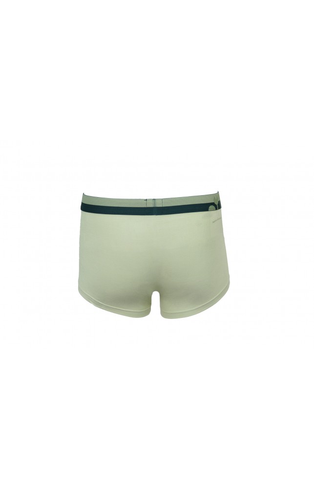 Nicobar Shorties R light green